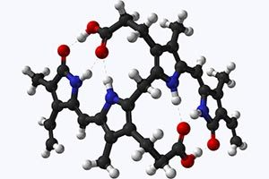 молекула билирубина