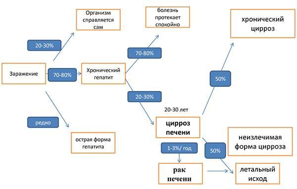 развитие гепатита с