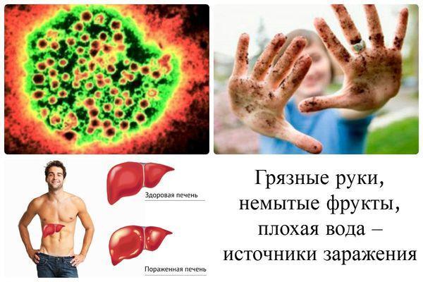 пути передачи вируса