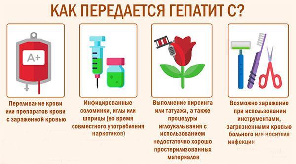 Как передается гепатит от человека к человеку