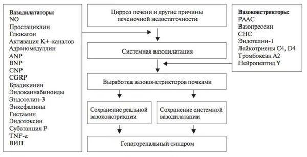 схема развития синдрома