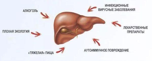 факторы, повреждающие печень
