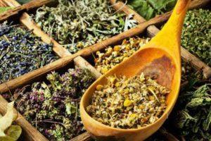 Травы для печени и желчного